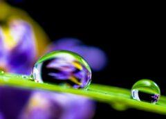 Kvalitní domácí zdroj vody